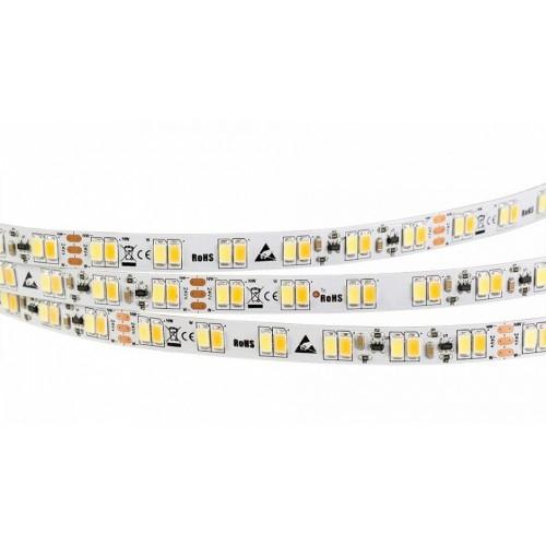LED Streifen LS1 5m 10mm 24V 125W White-MIX 600LED (100mm, IP20)